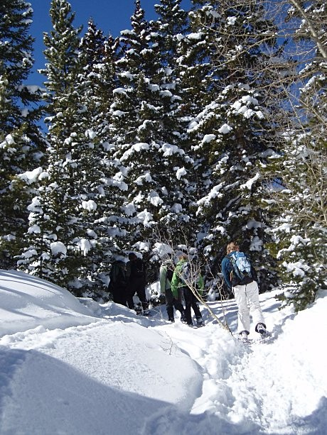 0208Snowshoeing21