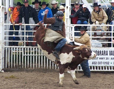 alumni news-Mick Thornton bull ride 2