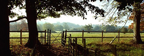 header-shepherds gate