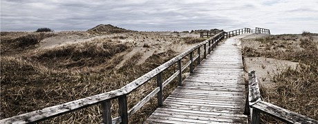 header-beach boardwalk